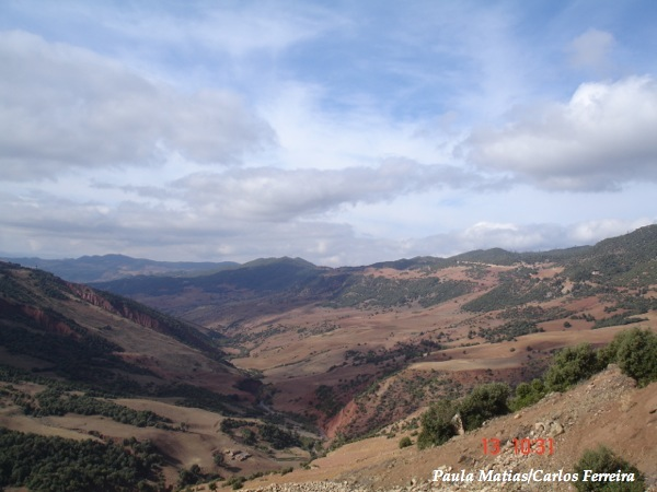 O Meu Zoom...de Marrocos, em 2014 - Página 2 DSC03934_new_zps04fc04ba