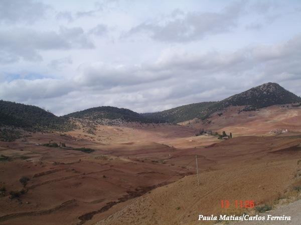 O Meu Zoom...de Marrocos, em 2014 - Página 2 DSC03946_new_zps030e46f5