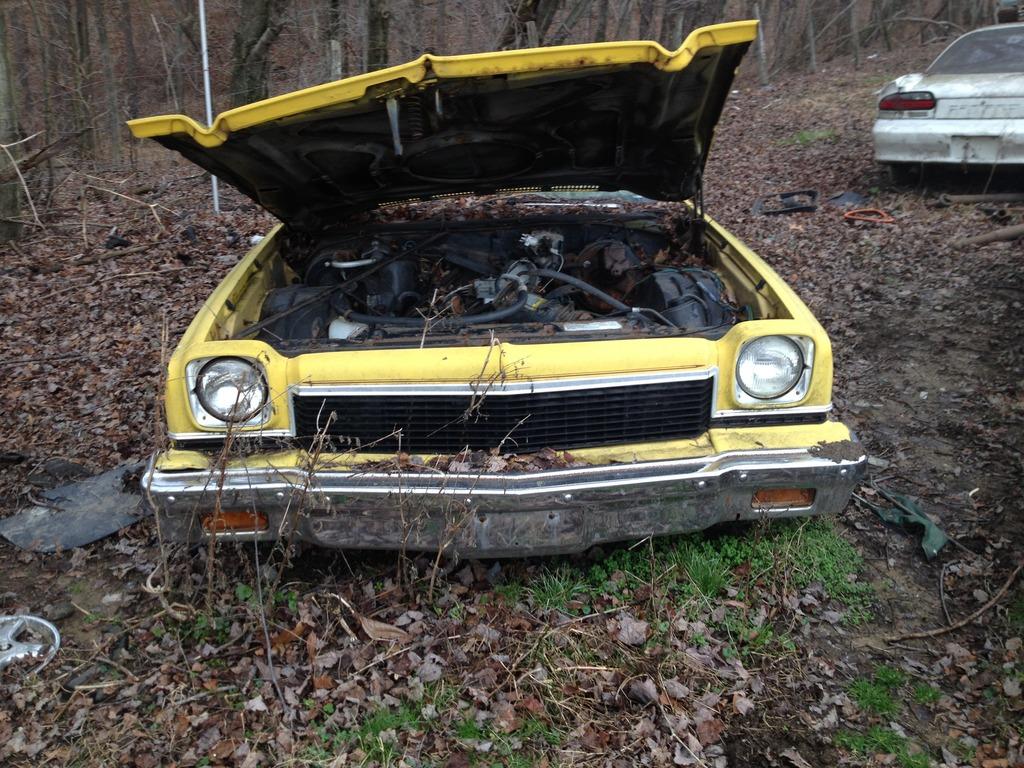 At the junkyard.. Image_zpsuswox6xd