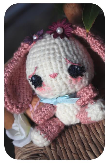 Amigurumi au crochet - Page 2 IMG_9993
