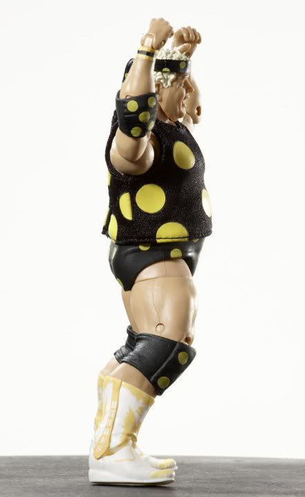 WWE Legends Serie 1 30101_397295969259_177709544259_397