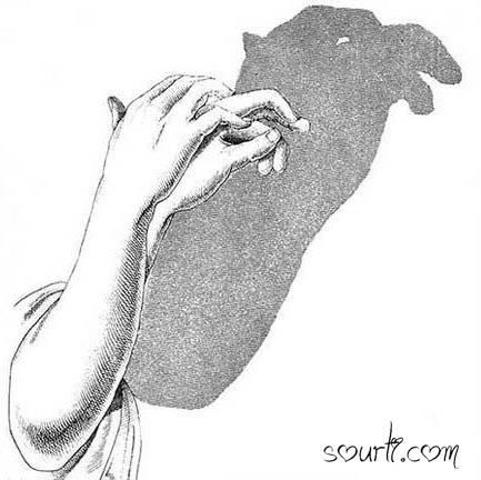 أصابع يديك ... مابها من أسرار   - صفحة 2 Shadows03