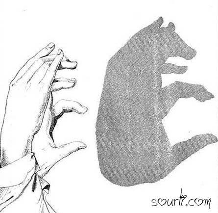 أصابع يديك ... مابها من أسرار   - صفحة 2 Shadows07