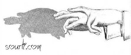 أصابع يديك ... مابها من أسرار   - صفحة 2 Shadows09