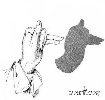 أصابع يديك ... مابها من أسرار   - صفحة 2 Shadows14