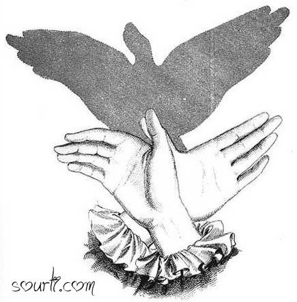 أصابع يديك ... مابها من أسرار   - صفحة 2 Shadows15
