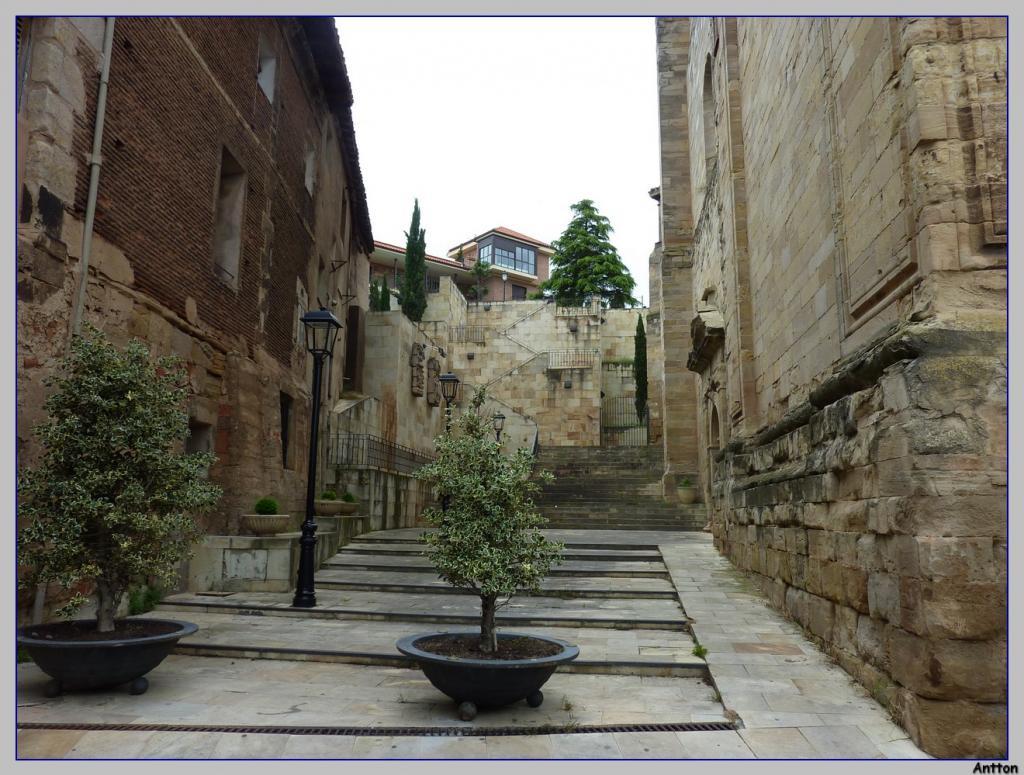 Pamplona - Santiago : nuestro camino P1100204