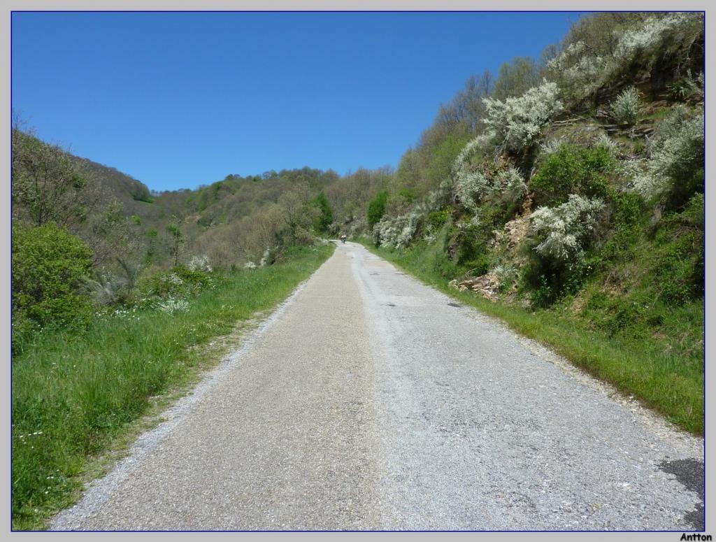 Pamplona - Santiago : nuestro camino P1100402