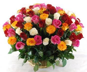 Поздравляем с Днем Рождения Галину (Галина Петровна) Ff9f487f8ca76d0140107224a14a5392