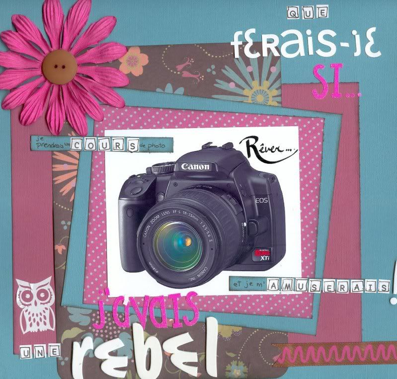 Février 2009 Que ferais-je si.... Rebel-1