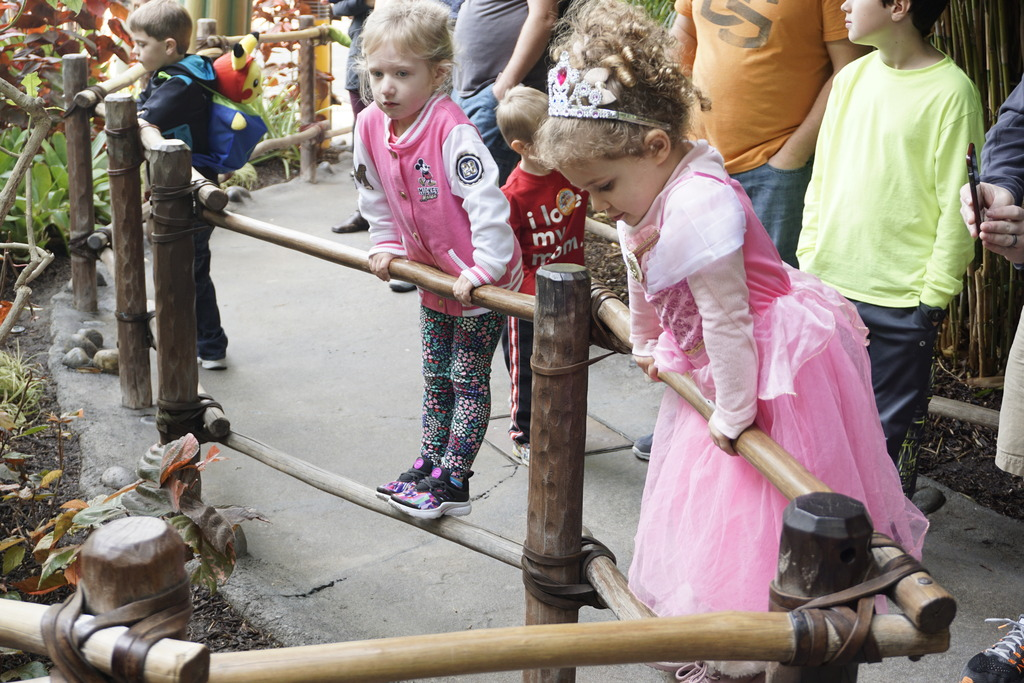 Gabriel & Family West Coast + Disneyland - Pagina 2 _DSC3315_zpsbujvtcdb