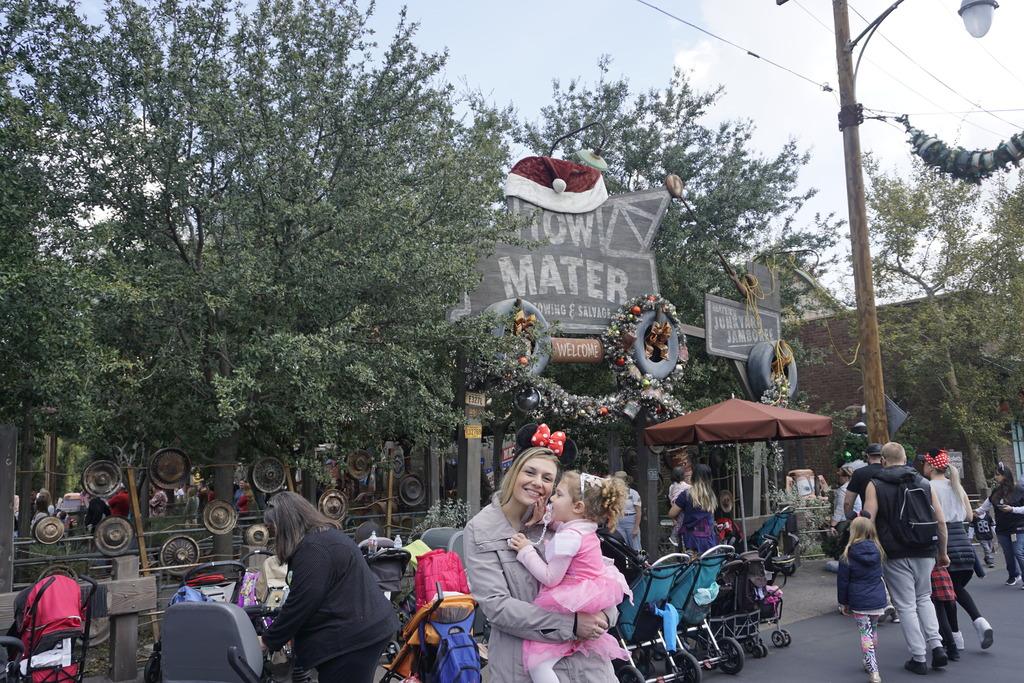 Gabriel & Family West Coast + Disneyland - Pagina 2 _DSC3403_zpspju3uft6