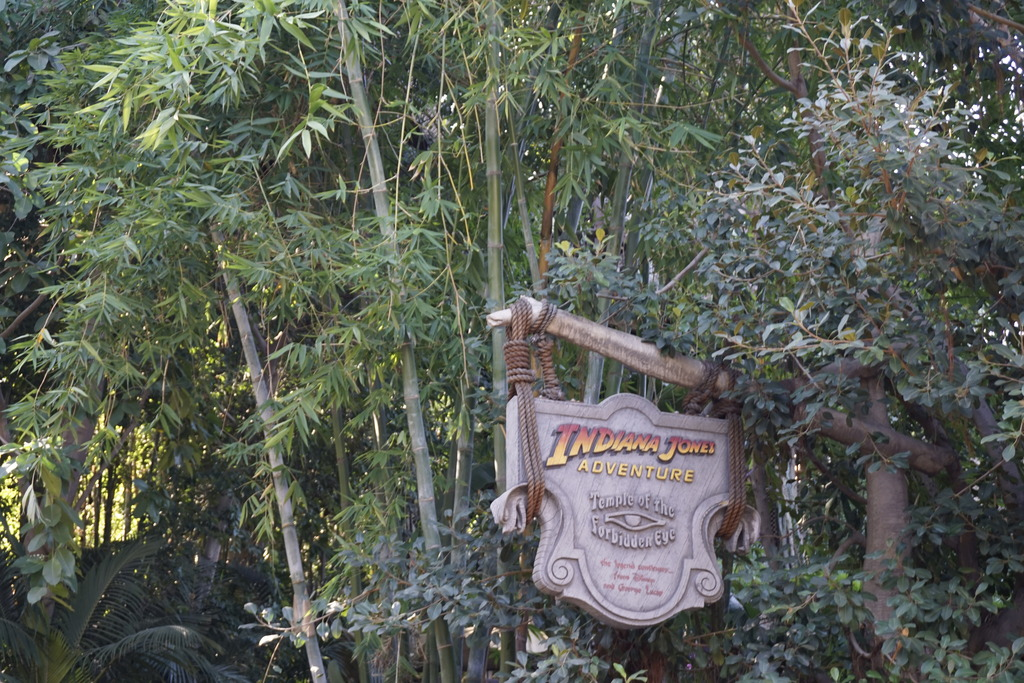 Gabriel & Family West Coast + Disneyland - Pagina 2 _DSC3669_zpskzxvqx6i