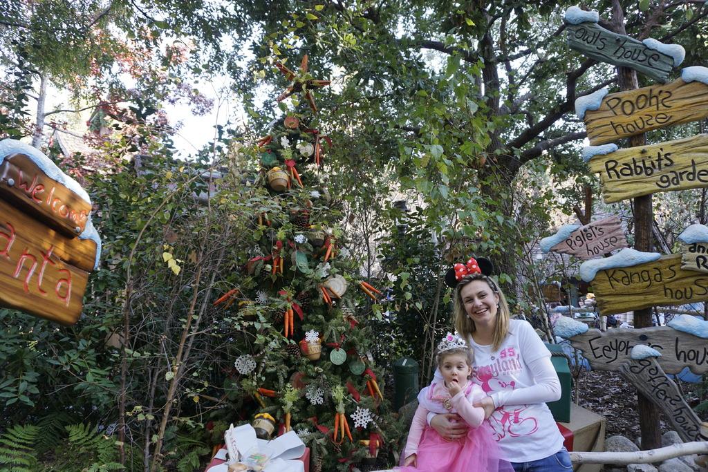 Gabriel & Family West Coast + Disneyland - Pagina 2 _DSC3766_zpseen0e60z