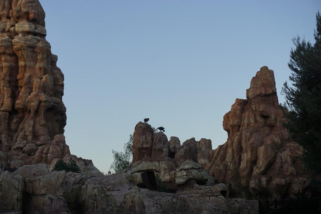 Gabriel & Family West Coast + Disneyland - Pagina 2 _DSC3821_zps6wwvumzp