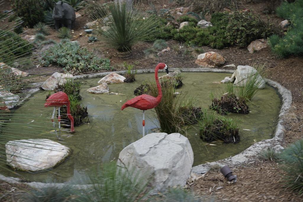 Gabriel & Family West Coast + Disneyland - Pagina 2 _DSC4162_zpsafzdgghy