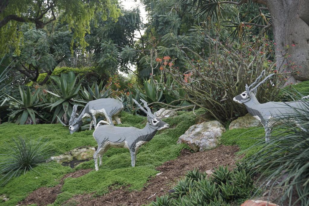 Gabriel & Family West Coast + Disneyland - Pagina 2 _DSC4164_zpswkutfadv
