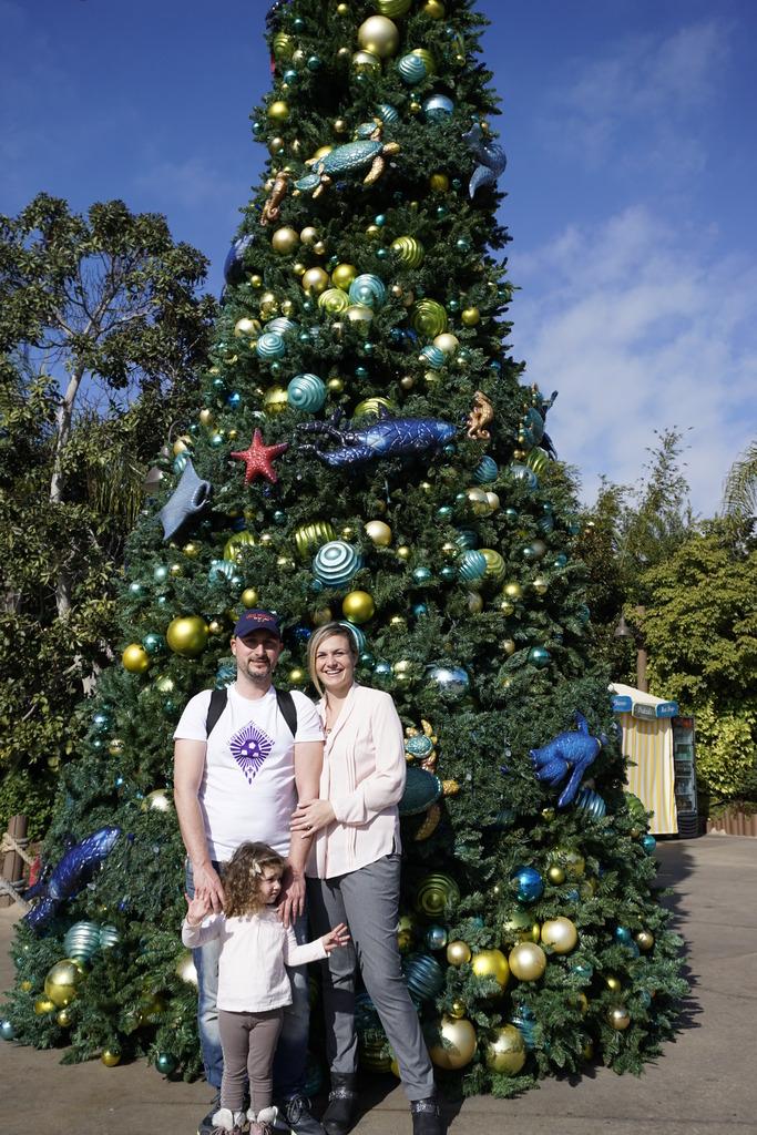 Gabriel & Family West Coast + Disneyland - Pagina 3 _DSC4601_zps7nry0adj