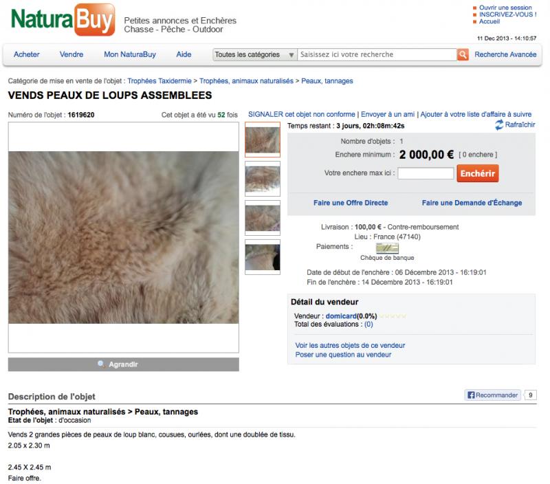 NaturaBuy vend de la  fourrure de loup - Déclenchement de l'Alerte Fourrure de Loup - Capturedrsquoeacutecran2013-12-11agrave141046_zpse3b2c8f2