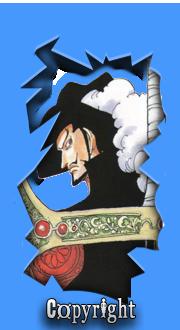 One Piece World Widget-copyright1