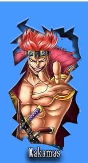 One Piece World Widget-nakamas