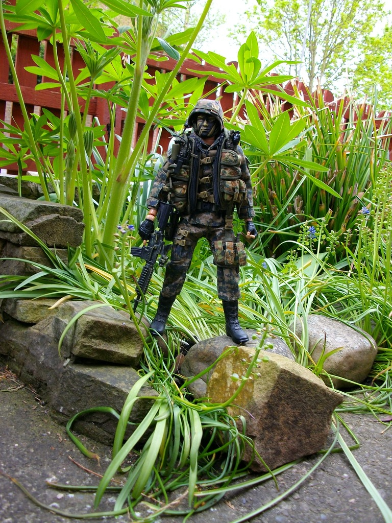 Special Forces team New%20Dragons%20024_zpsbsx0tre6
