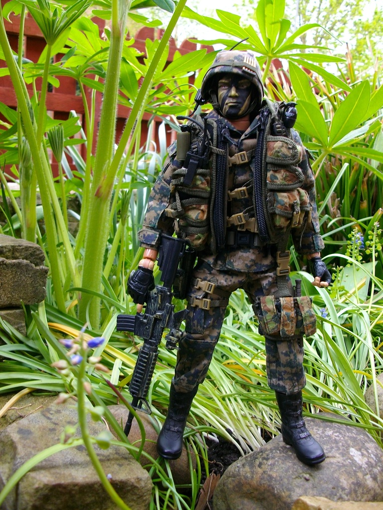 Special Forces team New%20Dragons%20025_zpsj6nswzis