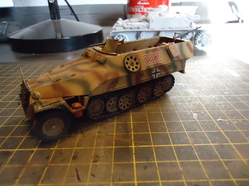 sdkfz - Sdkfz 251/D Tamiya  DSC00211_zpscf031a88