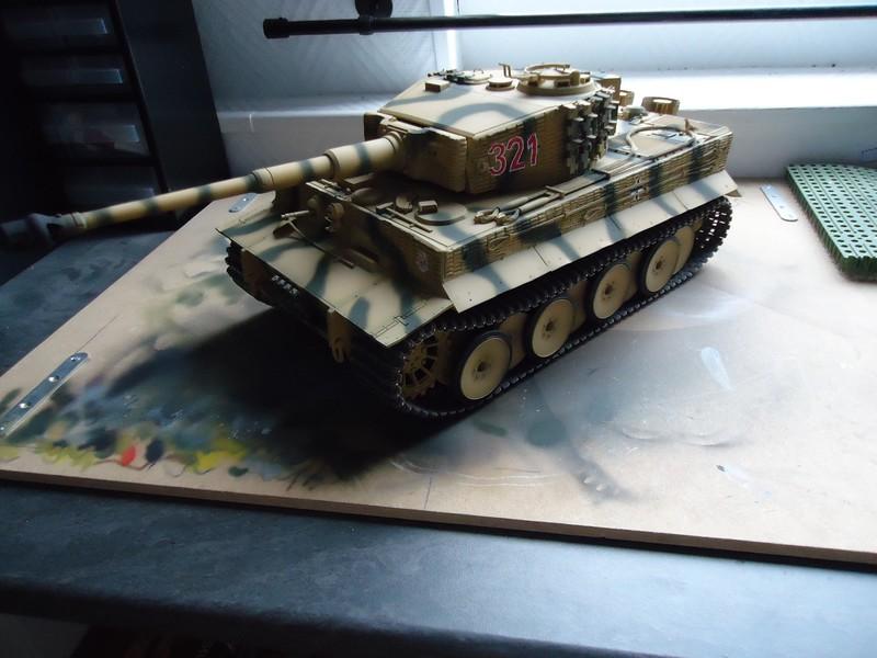 peinture - Tiger , la peinture continue - Page 2 DSC00296_zps73f03430