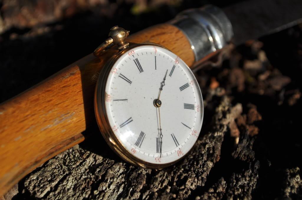 Votre montre de poche du moment ! - Page 4 DSC_0194