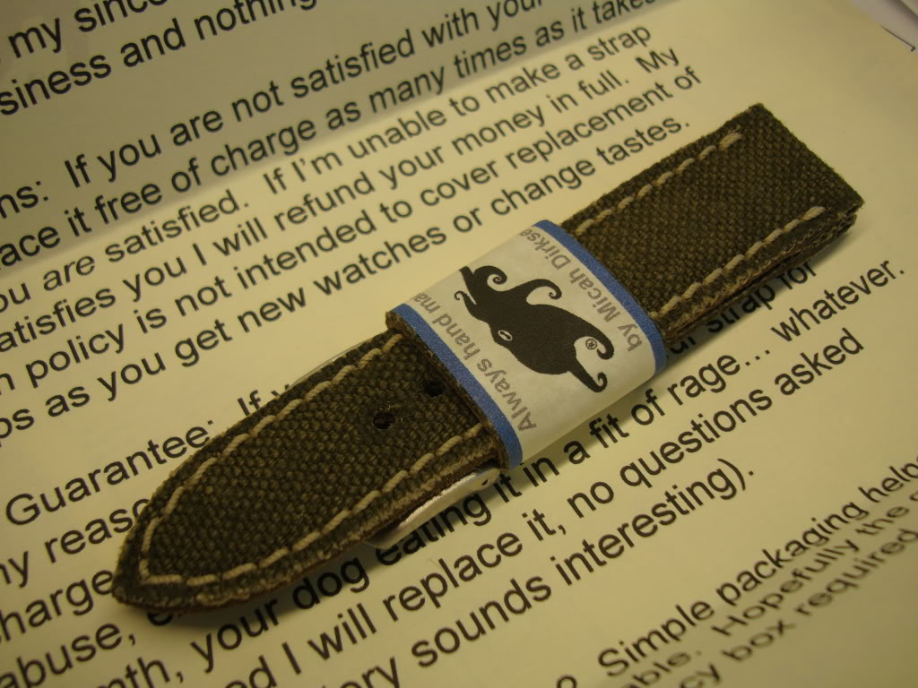 New strap for my Aegir CD-2 - Micah Content! DSC00415