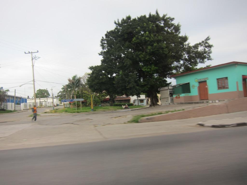 O vara comunista: Cuba si Venezuela. IMG_1507