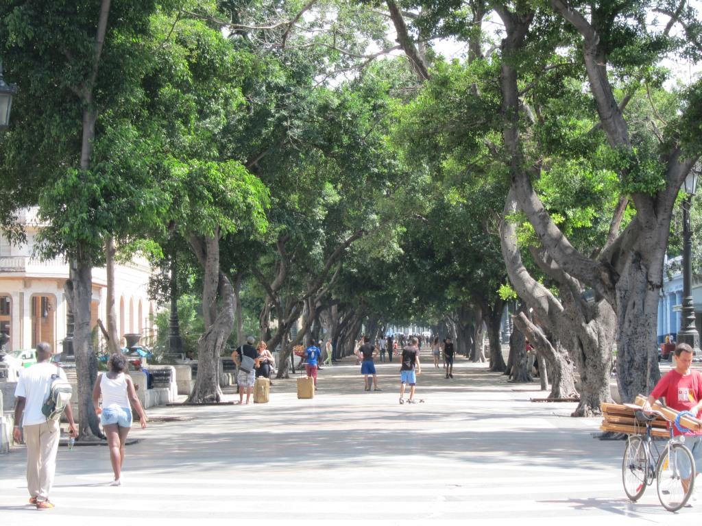 O vara comunista: Cuba si Venezuela. IMG_0474