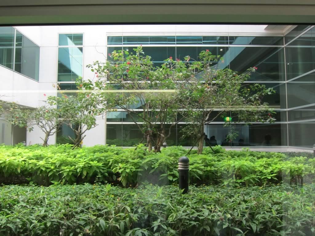Sudul Vietnamului de revelion 2011/2012: OTP-KBP-SGN cu Aerosvit! IMG_1570