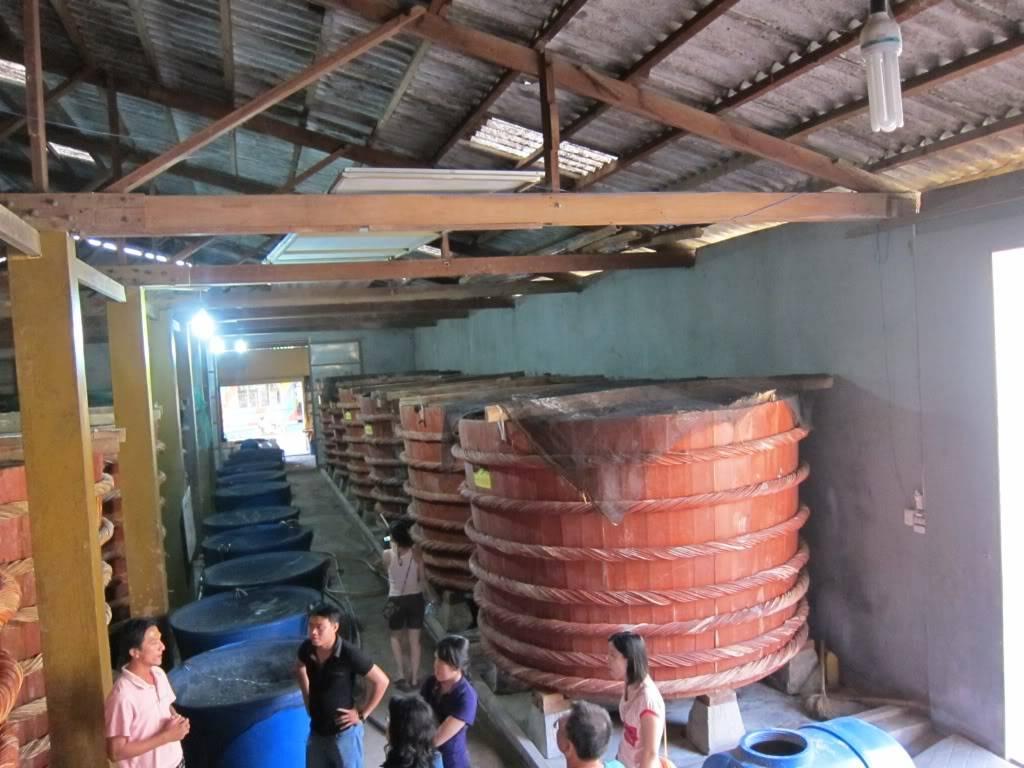 Sudul Vietnamului de revelion 2011/2012: OTP-KBP-SGN cu Aerosvit! IMG_2348