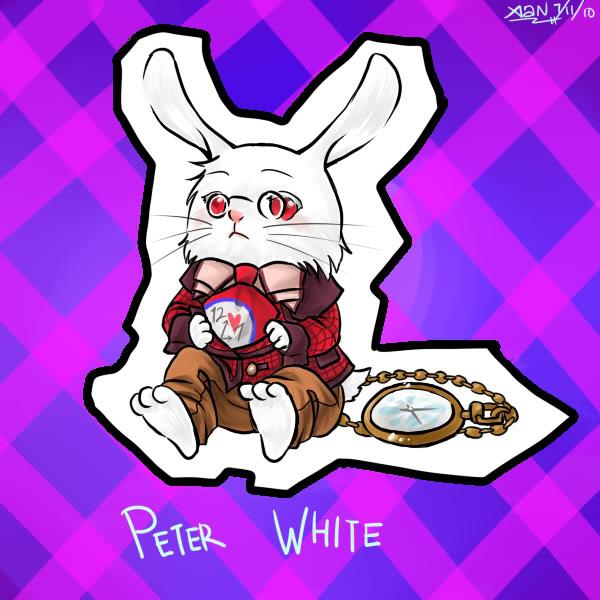 rabbit bou's pet Therabbit