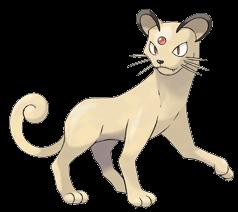 Les Pokémons et les animaux Persian