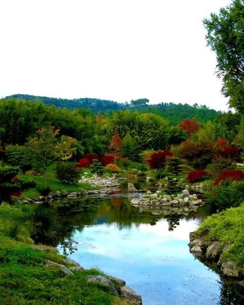 Nevertheless Garden A_river_ine_the_japanese_garden____by_laironessa_de_imatge-d4o39dw