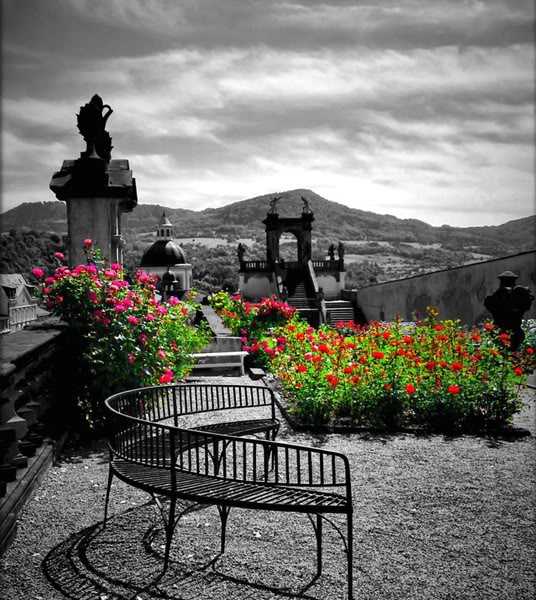 Nevertheless Garden Abandoned_bench_in_rose_garden_by_past1978-d2rym08