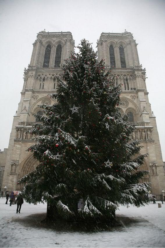 EN PARIS HASTA LA NIEVE ES CHIC 4vz6mlle8ovt1vbp97ktnkga48bfzwd1