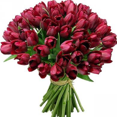 Поздравляем с Днем Рождения Юлию (Феникс) 67fcc4dcecb35dd1a40f9ddc8a577829