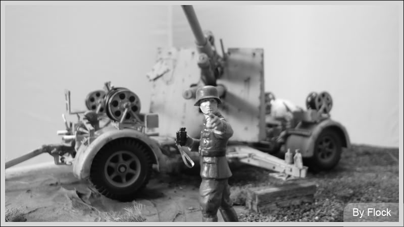 88mm Gun Flak 37 - [TAMIYA  1:35] - 10/03/09 - mise en place et Diorama... Diorama_01030