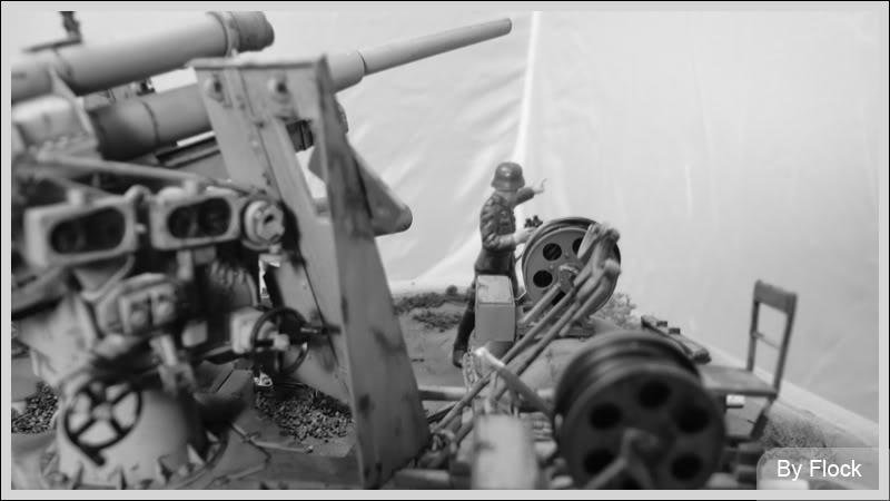 88mm Gun Flak 37 - [TAMIYA  1:35] - 10/03/09 - mise en place et Diorama... Diorama_01035
