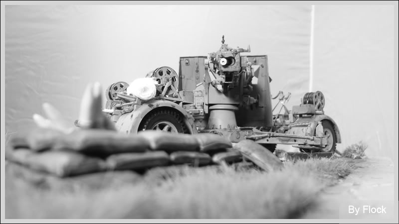 88mm Gun Flak 37 - [TAMIYA  1:35] - 10/03/09 - mise en place et Diorama... Diorama_01036