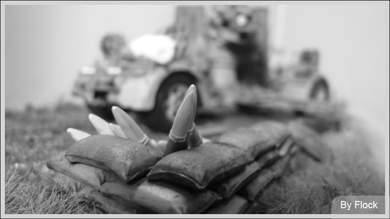 88mm Gun Flak 37 - [TAMIYA  1:35] - 10/03/09 - mise en place et Diorama... Diorama_01037