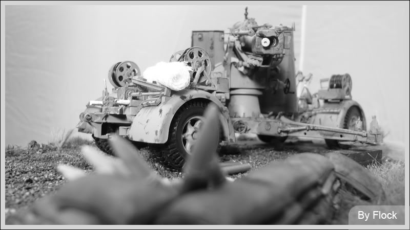 88mm Gun Flak 37 - [TAMIYA  1:35] - 10/03/09 - mise en place et Diorama... Diorama_01038