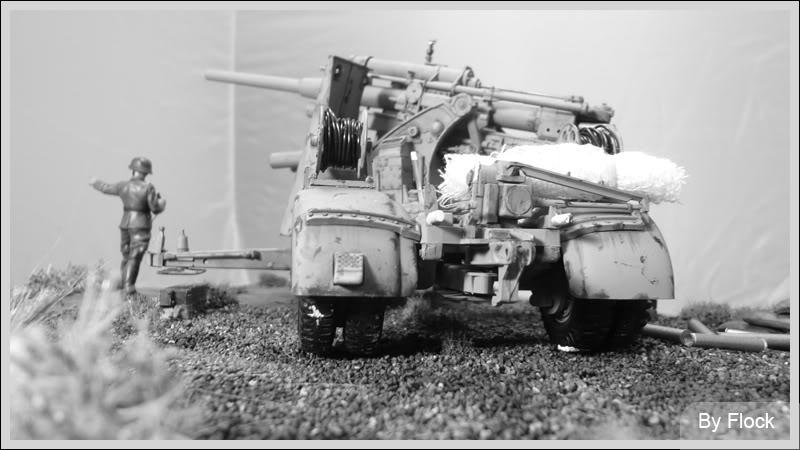 88mm Gun Flak 37 - [TAMIYA  1:35] - 10/03/09 - mise en place et Diorama... Diorama_01041
