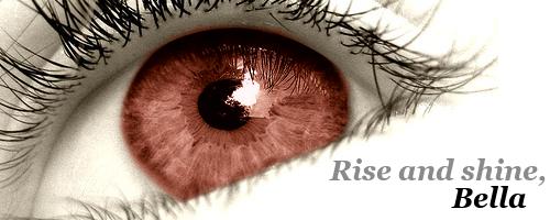 Dasha's Banners [UPDATE: 28/10/08] (35 banners, 6 mini banners) Eyesig