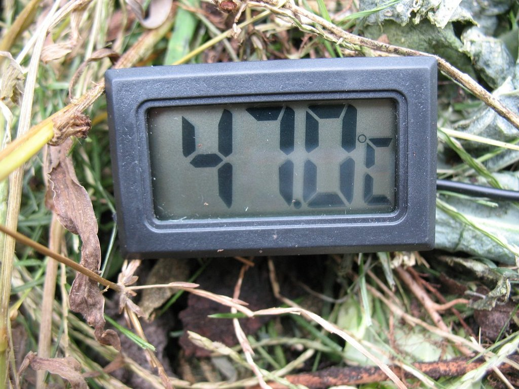 2 - TrolleyDriver's Compost Thermometer IMG_2531_zpstcmzwbje