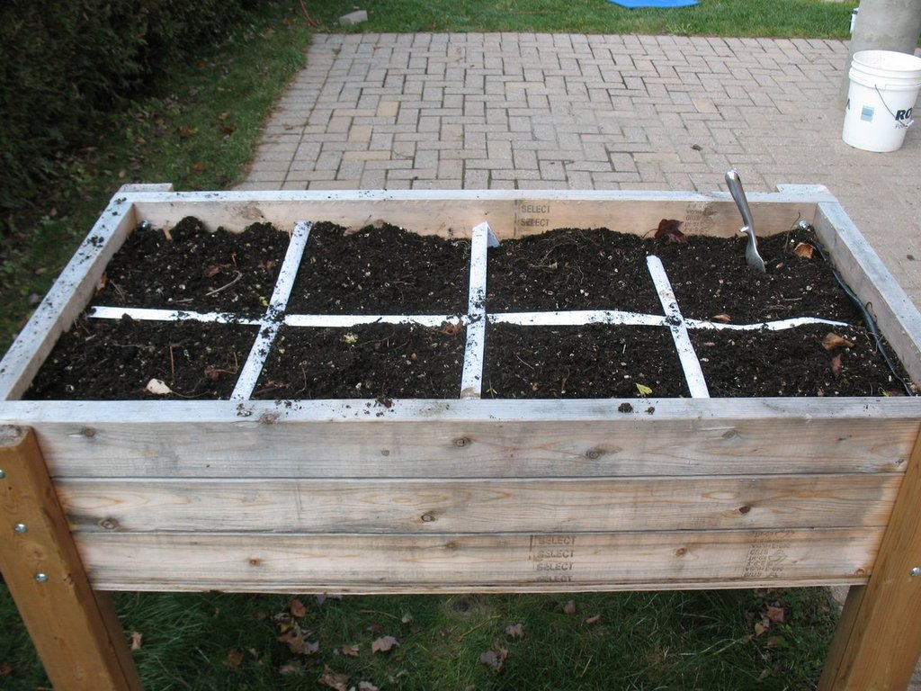 Topics tagged under 2 on Square Foot Gardening Forum - Page 3 IMG_3164_zpsncnwexqb